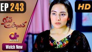 Drama   Kambakht Tanno - Episode 243   Aplus ᴴᴰ Dramas   Tanvir Jamal, Sadaf Ashaan