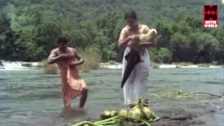 Malayalam Actress cleavage   malayalam actress Seema Cleavage Show   Mallu Actress