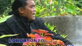 Lorobronto - Didi Kempot
