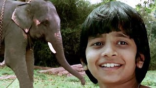 Bollywood Full Movies - Keshu - New Hindi Dubbed Movies – Kids Jungle Film - Latest Comedy Movie