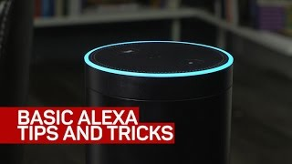 Basic Alexa tips and tricks