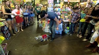 Criss Angel BeLIEve: Do Your Stuffed Animals Come Alive?! (On Spike)