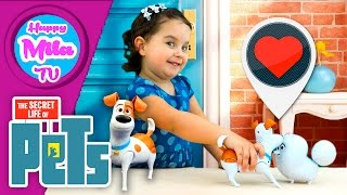 How To Pet Walking And Talking Pets Max And Gidget The Secret Life Of Pets | HappyMilaTV #118