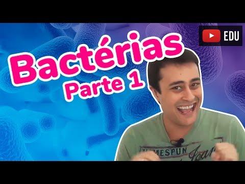 Reino Monera Bactérias Parte 1 Prof. Paulo Jubilut