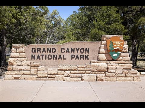 How to visit Grand Canyon south rim advice from a local