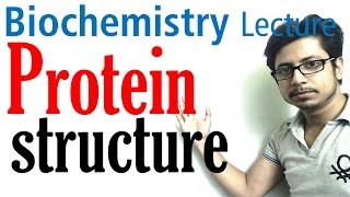 Protein structure | primary secondary tertiary and  quaternary structure of protein