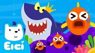 샤샤샤 상어 왕 ♪ | 상어송 | 동물동요 | 새로운 티디 인기동요 채널을 만나보세요! | 어린이 인기동요★지니키즈
