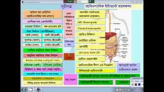 Homeopathic Bangla Software: Learning Materia medica