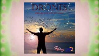 DVibez - Drones | 2017 Music Release