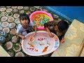 Download Video Tangkap ikan dan bola warna warni mandi bola - Mainan anak - Catch the fish and bathe the ball 3GP MP4 FLV