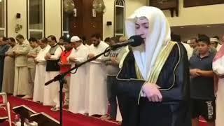 Quraan tilawat Best speak