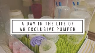 Day in the Life of an Exclusive Pumper // Stay at Home Momma of Infant & Toddler