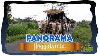 PANORAMA YOGYAKARTA - GEROBAK SAPI