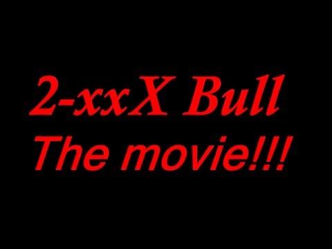 2 xxX bull