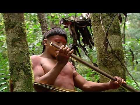 Xxx Mp4 Showering In The Jungle 3gp Sex