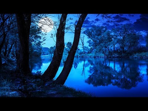 Xxx Mp4 Soothing Night Time Forest Sounds 2 Hour Ambient Soundscape For Sleep Amp Relaxation 3gp Sex