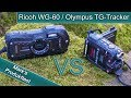 Ricoh WG-60 - VS - Olympus TG-Tracker