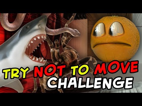 Annoying Orange Try Not to Move Challenge