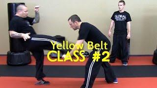Beginner Krav Maga - Yellow Belt/Level 1 - Class #2 (Warm Up, Drills, Stretching)