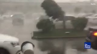 China Guangzhou Typhoon 3 Nida | Videos del Tifón Nida en Guangzhou
