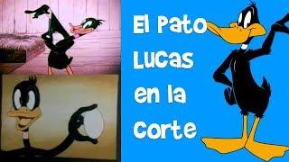 EL PUERCO PORKY y EL PATO LUCAS en la corte | Lo Mejor de Looney Tunes en Español Latino