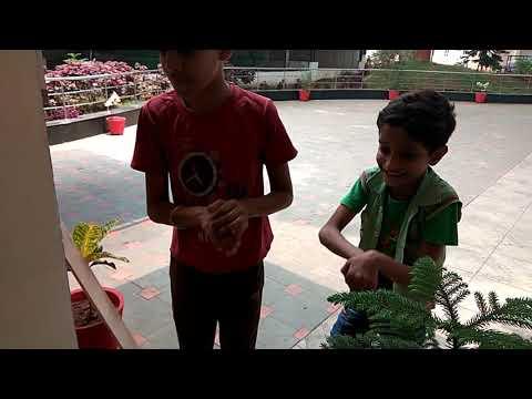 Xxx Mp4 Nagin Dance By Kids Infront Of Actual Nagin Dedicated To Bangladesh Cricket Team 3gp Sex