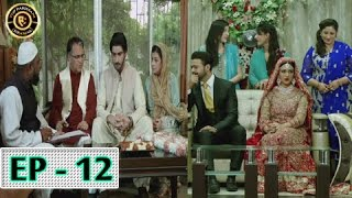 Tumhare Hain Episode 12 - 14th April 2017 - Top Pakistani Drama