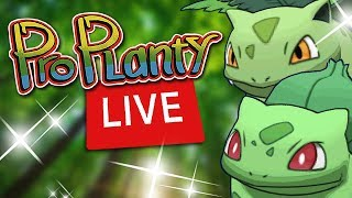Shiny Bulbasaur Community Day Event LIVE