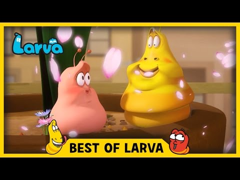 LARVA BEST OF LARVA Funny Cartoons for Kids Cartoons For Children LARVA 2017 WEEK 14