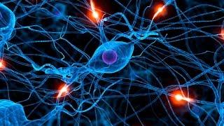 5 dicas para melhorar a memória