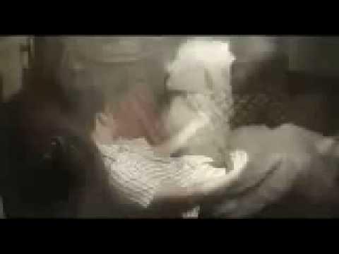 Xxx Mp4 Sex Arab 3gp Sex