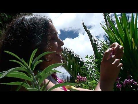 Carnaval andahuaylino JOSEFINA ÑAHUIS Carnavales apurimeños