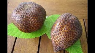 هل تعلم ماذا يحدث لك إذا أكلت فاكهة الثعبان ؟