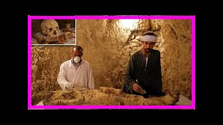 News 24/7 - Egyptian archaeologists discovered the body of a leaf-official page