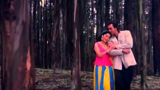 Mera Dil Bhi Kitna Pagal Hai   Saajan 1991  HD  1080p  BluRay  Music Videos   YouTube