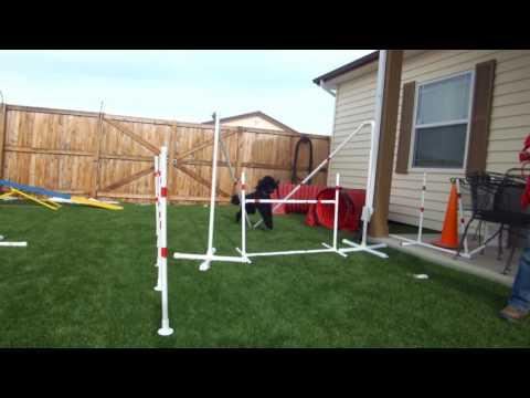 12 22 16 Salo Spider jump form practice  20 inch bar   fb