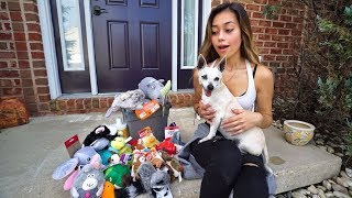 SURPRISING MY PUPPY WITH HER DREAM GIFTS!