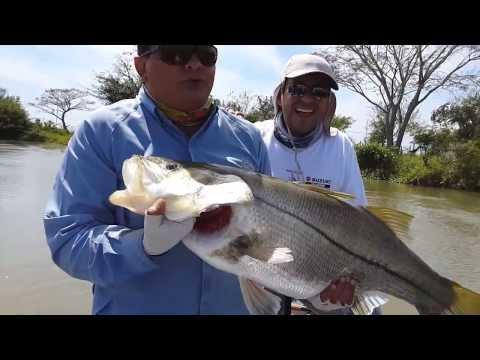 Robalo 12.2 Kg pescado en tour de pesca con Paco Marroquin