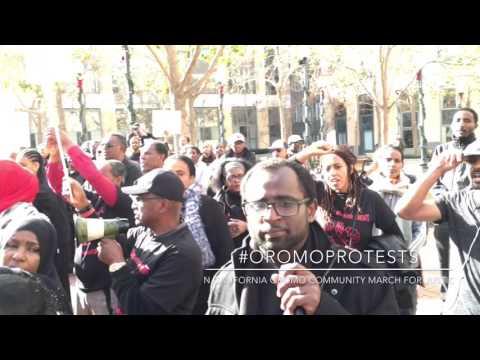Xxx Mp4 OromoProtests 3gp Sex