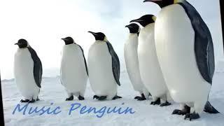اغنية رقصة البطريق