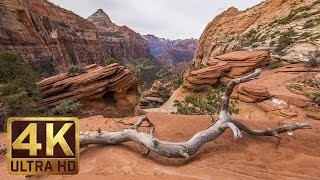 Zion National Park. Autumn   4K Nature Documentary Film/Trailer