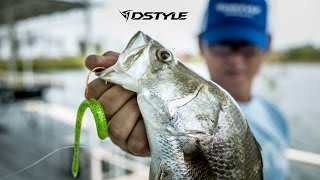 DSTYLE  【 TORQUEE STRAIGHT 5.8 】ACTION CONCEPT
