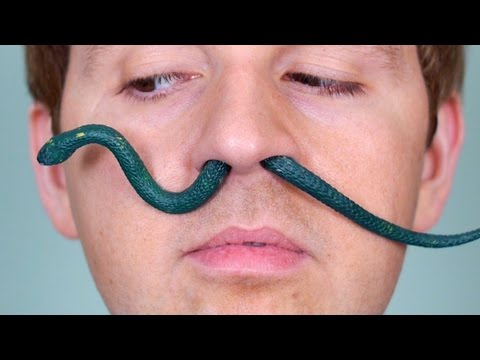 Xxx Mp4 SNAKE IN NOSE 3gp Sex