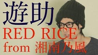 【TVに出ます】遊助さんとRED RICE(from 湘南乃風)さんと時々ボク