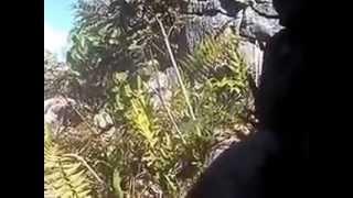BAKU TEMBAK TPN-PB DAN TNI/POLRI DI LANI-JAYA  IBU KOTA TIOM DISTRIK PRIME