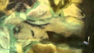 목욕탕 자연석 속의 영화 아바타 여자 주인공 모습  [Avater female figure]