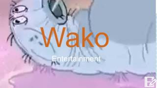 Master Card Wako Entertainment Sony Pictures Television Logo 2017