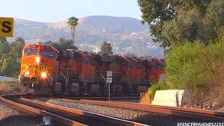 Metrolink, Surfliner & BNSF Freight Train in South Orange County (July 13th, 2014)