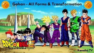 Gohan - All Forms and Transformations (Dragon Ball Z - Dragon Ball Super)
