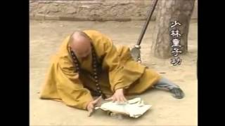 The power of Qi - Shaolin pyrogenisis Master
